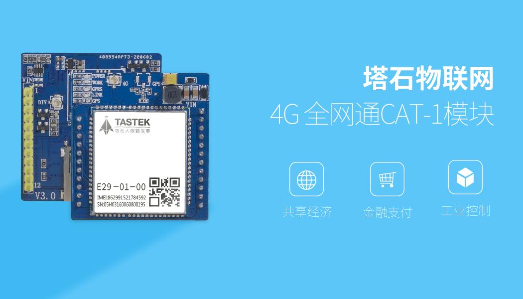 TAS-E29V全网通模块